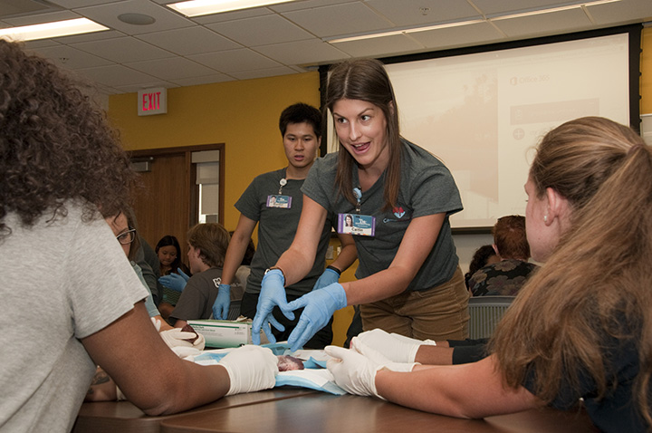 Medical students led a workshop on dissecting pig hearts during Camp Cardiac at the UMKC School of Medicine.